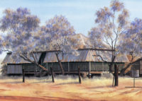 amongst-the-trees-winton