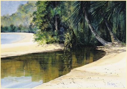 """Tidal Creek, Dunk Island"""
