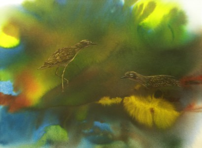 """Curlew Sentinels"" Card"